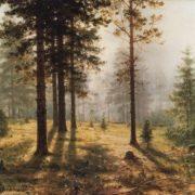 Fog in the forest. Shishkin
