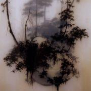 Foggy creativity by Brooks Salzwedel