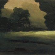 Glade in the forest. Fog. Kuinji