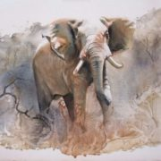 Great elephant by Karen Laurence-Rowe