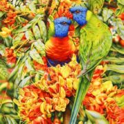 Heidi Willis. Rainbow Lorikeets and Blackbean