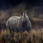 Rhino by Karen Laurence-Rowe