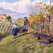 Sergey Poznyak. Harvesting grapes in Spain. 2010