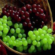 Wonderful grapes