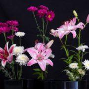 Wonderful ikebana