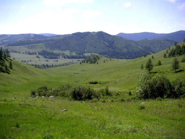 Beautiful steppe