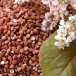 Buckwheat – healthy food