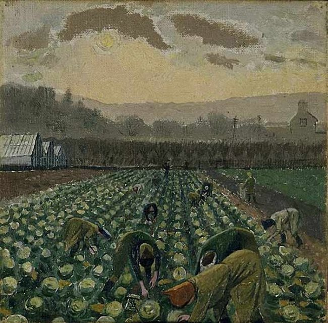 Evelyn Dunbar. Sprout Picking. 1947