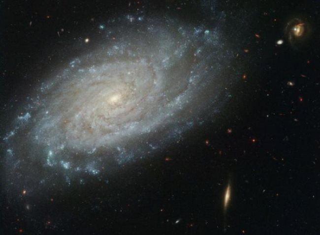 Great Milky Way