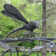 Monument to the dragonfly in Donetsk