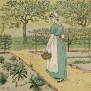 Randolph Caldecott. Girl Working in a Rural Kitchen Garden Collecting Cabbages