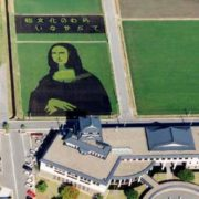 Rice Mona Lisa