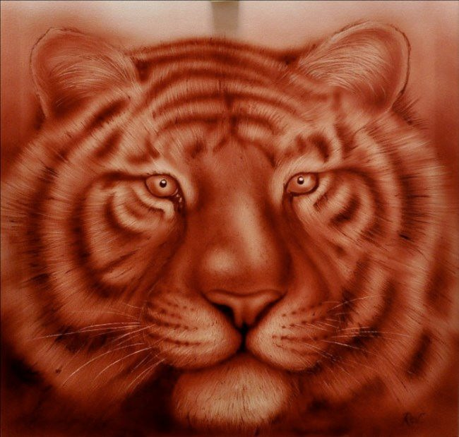 Tiger by Rev Mayers