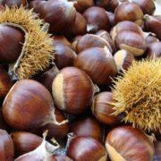 Wonderful chestnuts