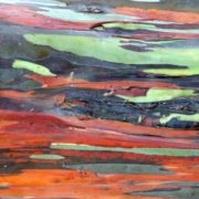 Bark of the rainbow eucalyptus