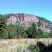 Bear Stone