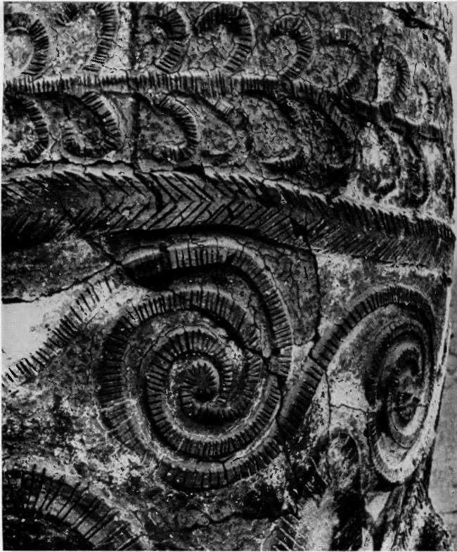 Giant pithos