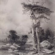 Old pines. Savrasov