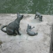 A cat with kittens. Singapore