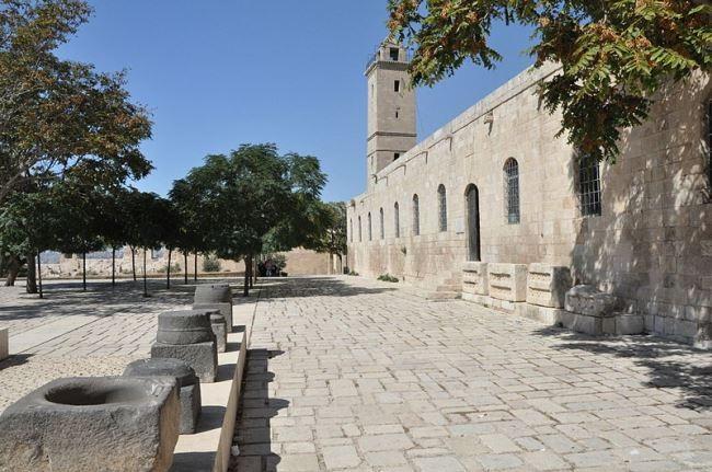 Aleppo citadel, Museum