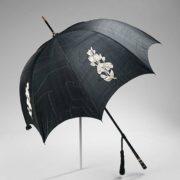 Astonishing umbrella