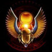 Beautiful scarab