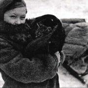 Cat during the Siege of Leningrad