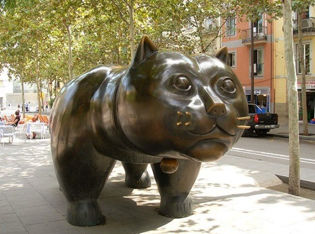 Cat from Barcelona