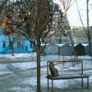Cat under the oak tree. Barnaul