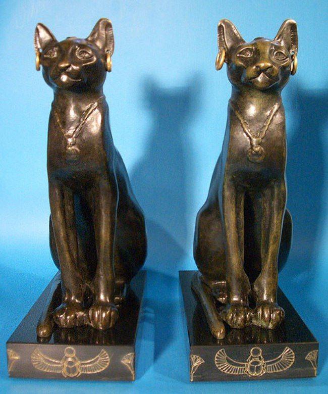 Egypians cats