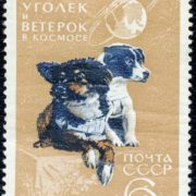 Postage stamp of the USSR. 1966. Ugolyok and Veterok in Space