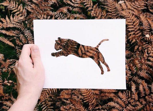 Big cat by Nikolai Tolstykh