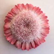 Charming flower by Tiffanie Turner