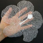 Pretty flower by Maude White