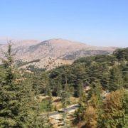 Al-Shouf Cedar Nature Reserve