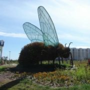 Monument to the fly in Akmola, Kazakhstan