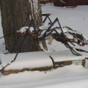 Mosquito monument in Kronstadt, Russia