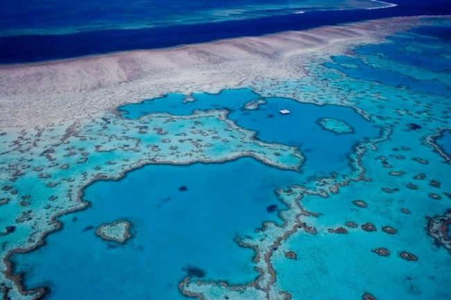 Exotic Great Barrier Reef