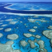 Fantastic Great Barrier Reef