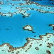 Incredible Great Barrier Reef