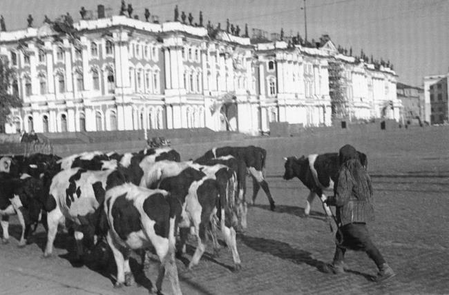 Palace Square. Autumn 1941