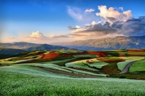 Amazing views of the red terraced fields in Dongchuan, Yunnan (China)