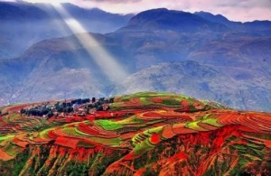 Awesome terraced fields in Dongchuan