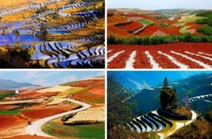 Red terraced fields in China