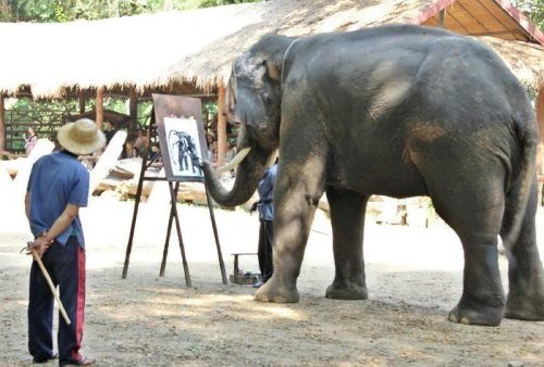 elephant painter