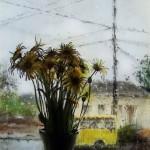 Just a summer rain