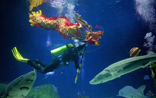 Dragon Dance under the water