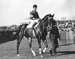 Racehorse Phar Lap