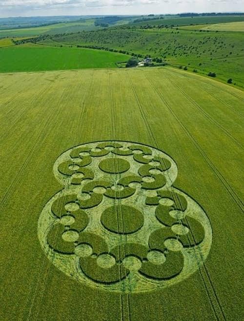Impressive Crop Circles