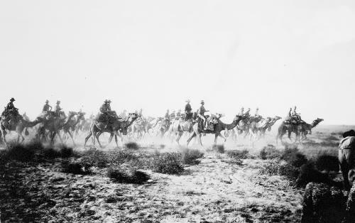 Australian troops on camels, 1917